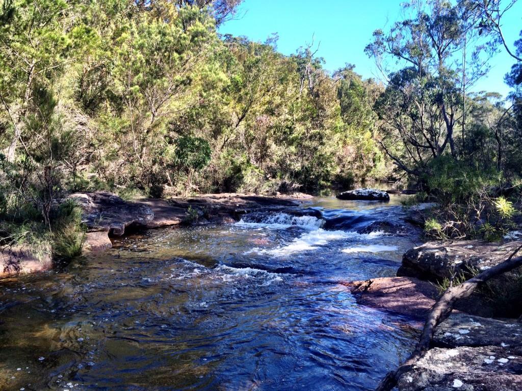 South West Arm Creek